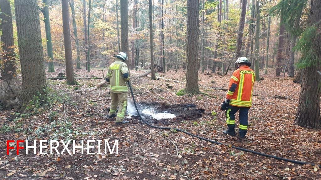 Brandeinsatz > Wald / Fläche